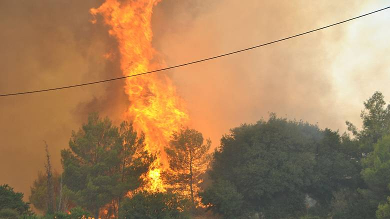 Ζάκυνθος: 30 φωτιές σε έναν μήνα - Τα σενάρια οργανωμένου σχεδίου καταστροφής (pics&aud)