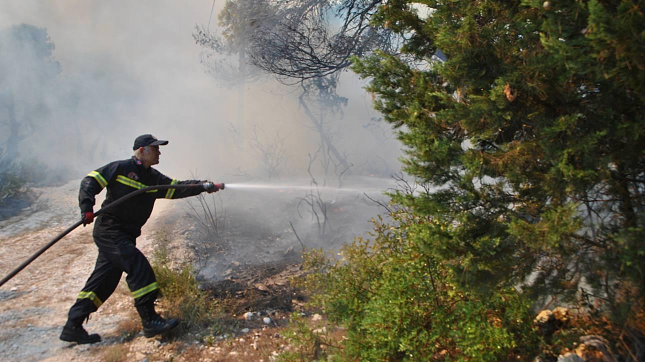 Σε εξέλιξη η πυρκαγιά στο Περιστέρι Αμαλιάδας (pics)