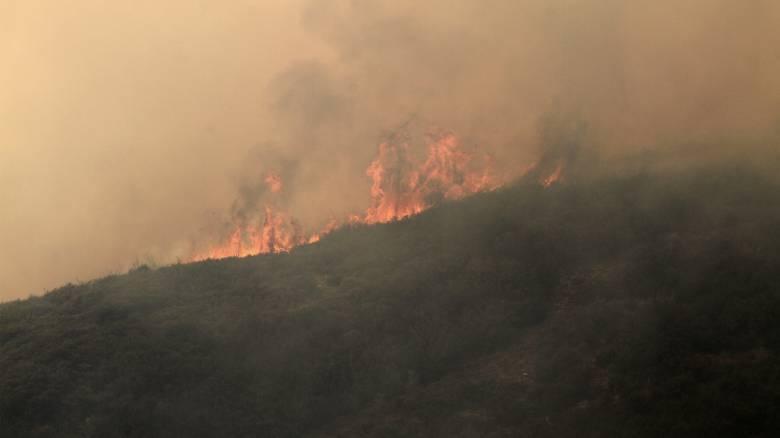 Σε ποιες περιοχές υπάρχει υψηλός κίνδυνος πυρκαγιάς σήμερα