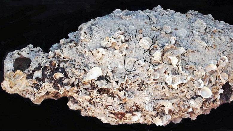 Ιταλικό κρασί 6.000 ετών βρέθηκε σε σπηλιά στη Σικελία