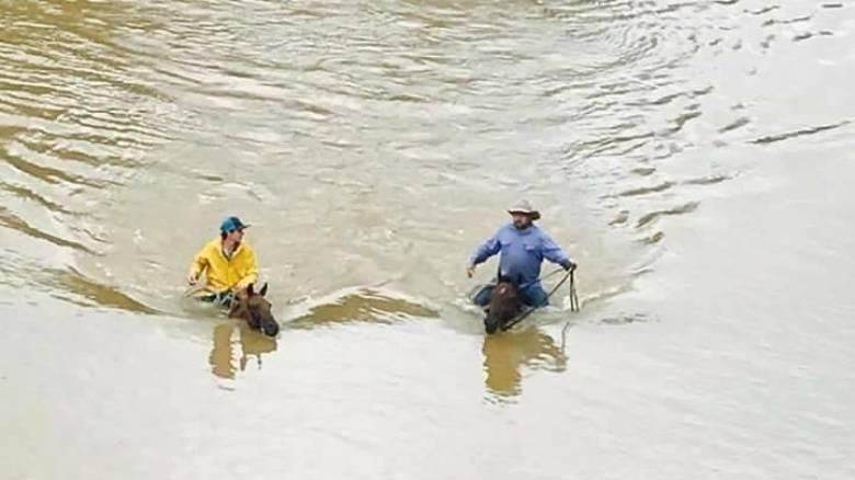 Χάρβει: Ένας πατέρας με τον γιο του σώζουν τα παγιδευμένα τους άλογα από τα απειλητικά νερά (vids)