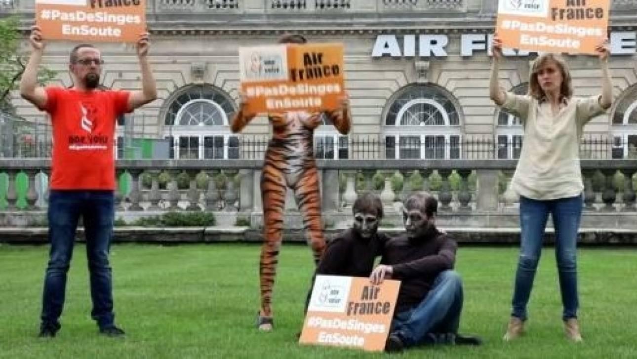 Μια «τίγρη» και δυο «πίθηκοι» διαδήλωσαν έξω από τα γραφεία της Air France
