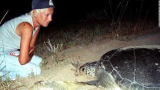 Διασώζοντας υπό εξαφάνιση θαλάσσιες χελώνες στην πρώην εμπόλεμη ζώνη του Λιβάνου