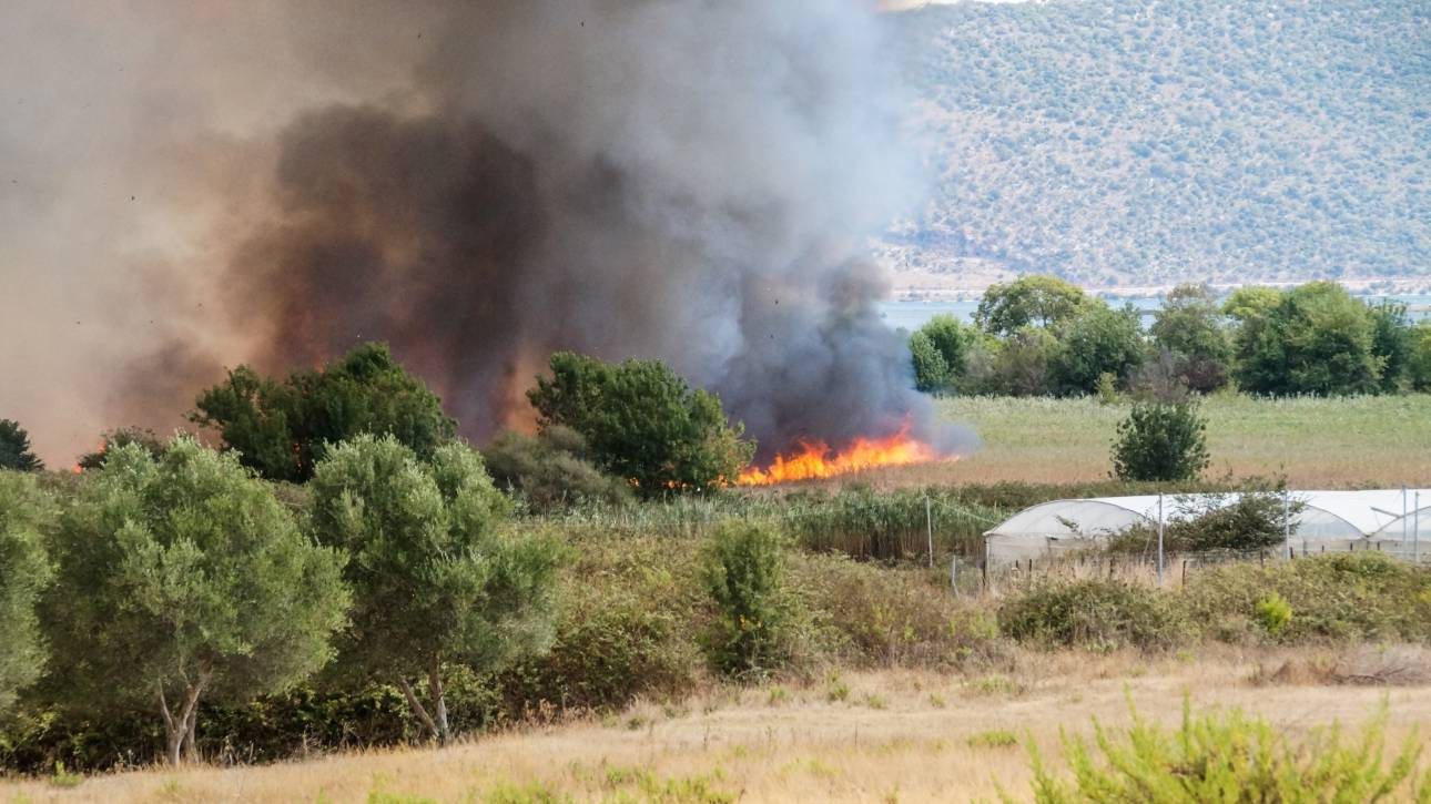 Πυρκαγιά στην Αριδαία Πέλλας