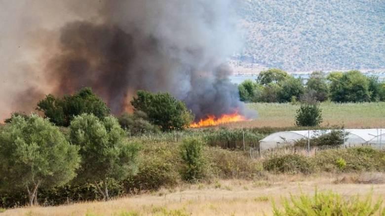 Τριάντα οκτώ αγροτοδασικές πυρκαγιές εκδηλώθηκαν το τελευταίο 24ωρο σε όλη την Ελλάδα