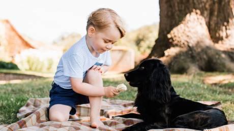 Πρίγκιπας Τζορτζ: Αλλάζει τις παιδικές διατροφικές συνήθειες της Βρετανίας με Γαλλικές φακές