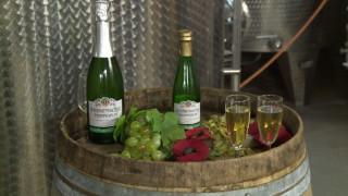 Οινοποιός δημιούργησε λευκό κρασί που έχει γεύση μπίρας (Pics)