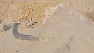 Χανιά: Άγνωστοι αφαίρεσαν απολιθωμένα ίχνη βάδισης προγόνου του ανθρώπου στην Κίσσαμο