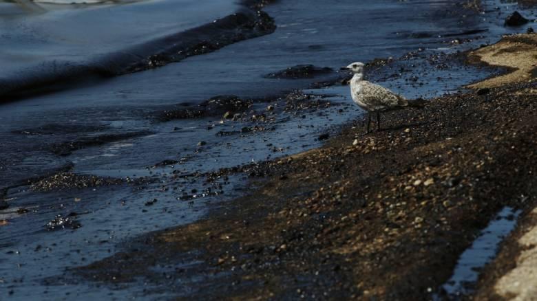 Πλοιοκτήτης του «Αγία Ζώνη ΙΙ»: Ξαφνικά το πλοίο πήρε κλίση και βυθίστηκε