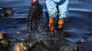 Πετρελαιοκηλίδα: Ειδικό κλιμάκιο του Δήμου Ρότερνταμ θα βοηθήσει στην απορρύπανση