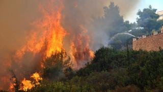Πυρκαγιά σε δασώδη έκταση στην πόλη της Ζακύνθου