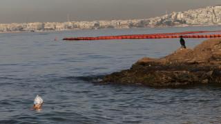 Σαρωνικός: Έως και δύο χρόνια θα χρειαστούν για να καθαρίσουν οι μολυσμένες θάλασσες