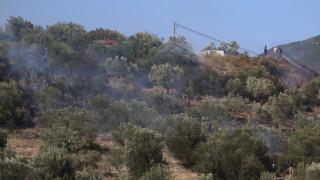 Μαίνεται η πυρκαγιά στη Νεμέα