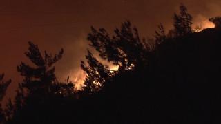 Ηλεία: Καλύτερη η εικόνα και στα τρία μέτωπα της φωτιάς