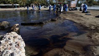 Το ΕΛΚΕΘΕ καθησυχάζει για τα ψάρια στον Σαρωνικό