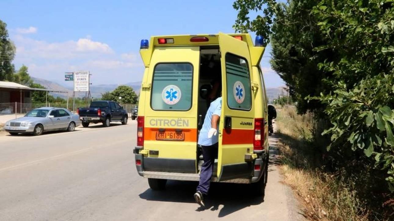 Άγρια ζώα κατασπάραξαν την 62χρονη Βρετανίδα τουρίστρια στη Ροδόπη