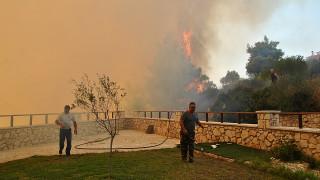 Εταιρεία από το Κατάρ κατέθεσε μήνυση για τις πυρκαγιές στη... Ζάκυνθο