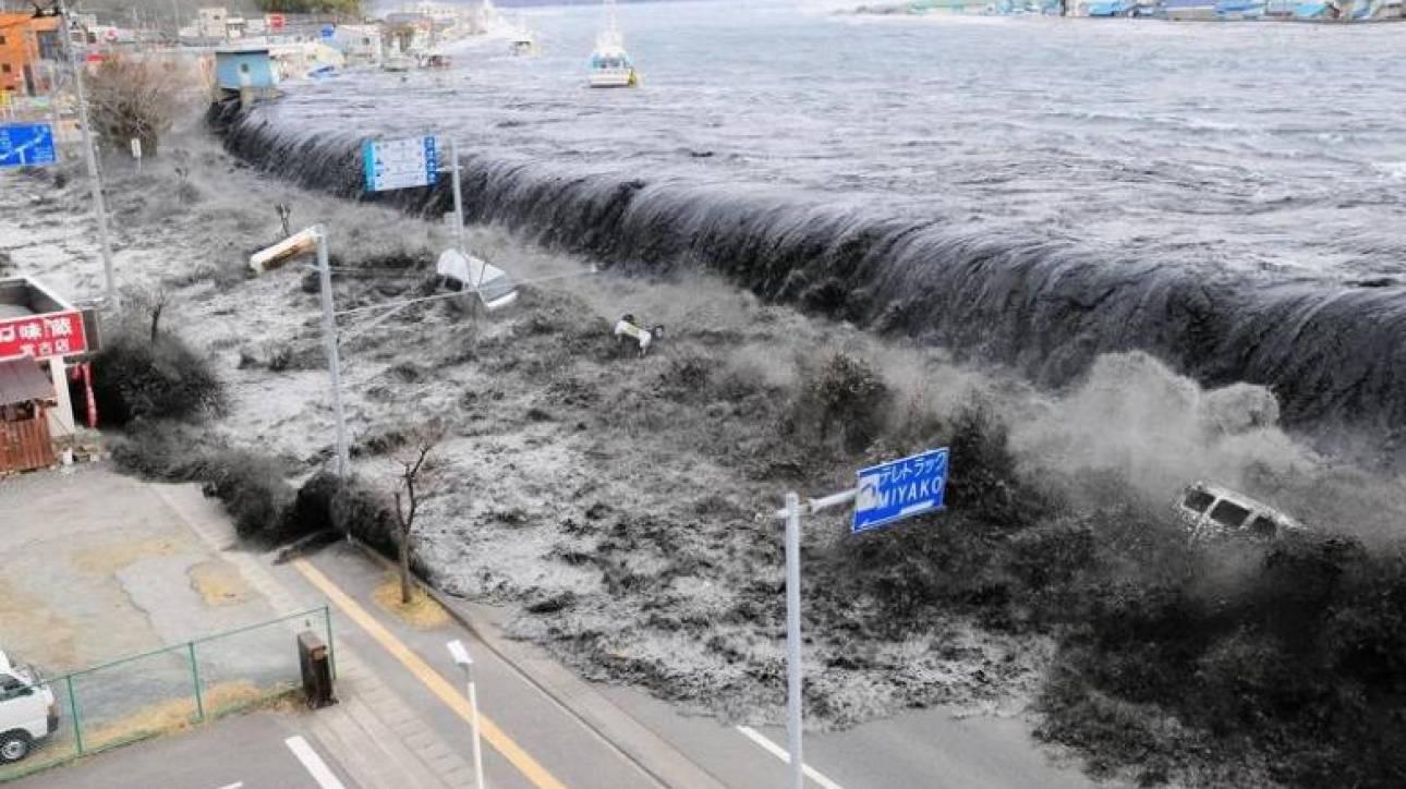 Θαλάσσια είδη από την Ιαπωνία έφθασαν στις ακτές των ΗΠΑ μετά το τσουνάμι του 2011