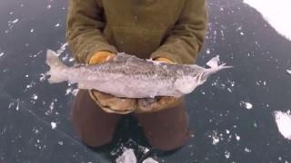 Άναυδοι δύο ψαράδες με αυτό που βρήκαν σε μία λίμνη