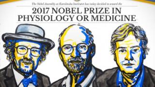 Σε τρεις Αμερικανούς επιστήμονες το Νόμπελ Ιατρικής (vid)