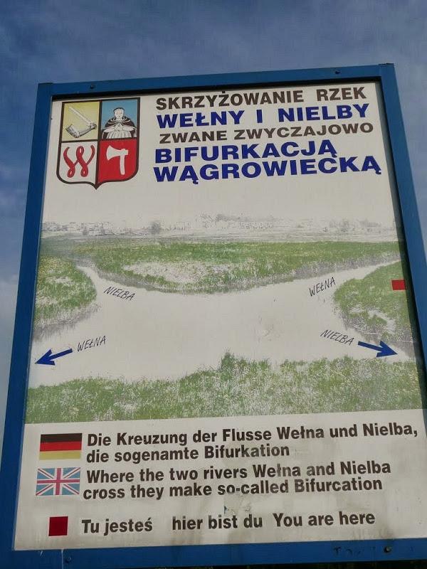 wagrowiec bifurcation 23