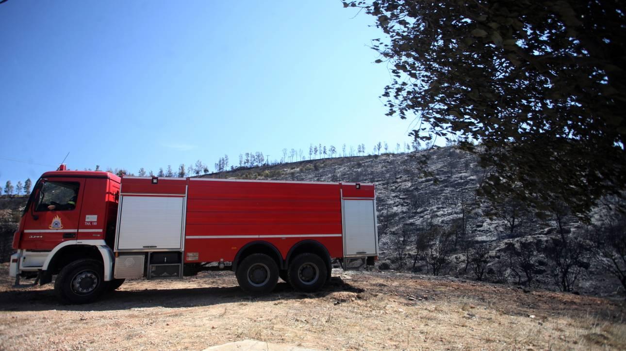 Περιφέρεια Ιονίων νήσων: Χρηματοδότηση 4.500.000 ευρώ στην Πυροσβεστική Υπηρεσία