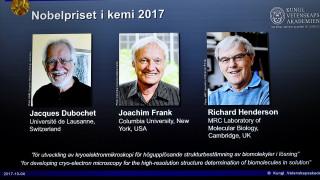 Νόμπελ Χημείας: Τρεις επιστήμονες «μοιράζονται» το βραβείο