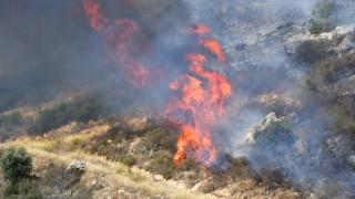 Μεγάλη φωτιά σε πεδίο βολής στο Ναύπλιο (pics)