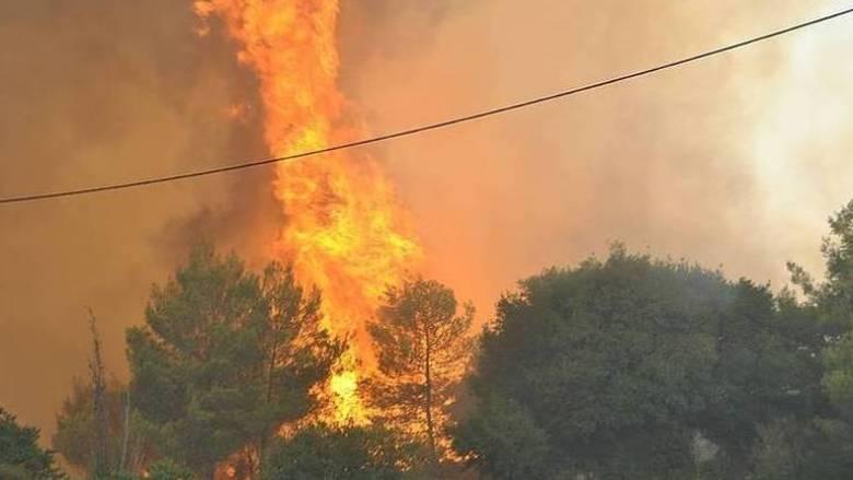 Φωτιά στο Αγρίνιο