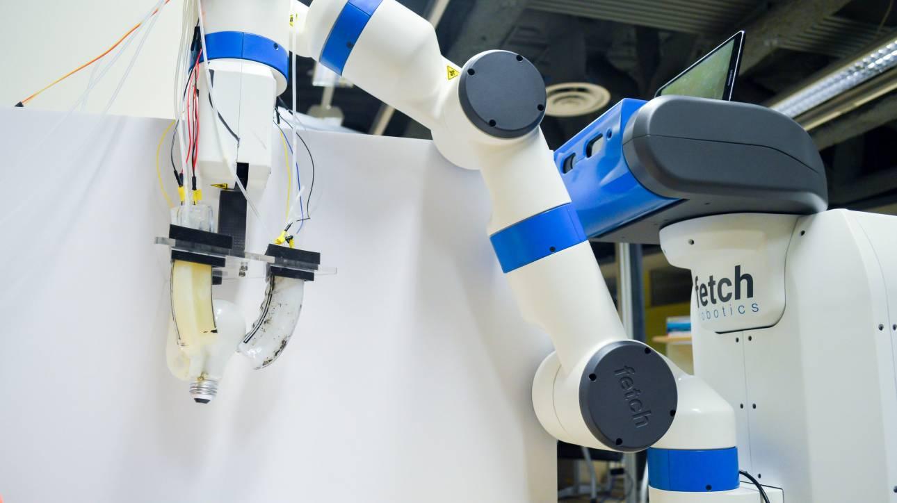 Ρομπότ με απαλά χέρια αλλάζει λάμπες!