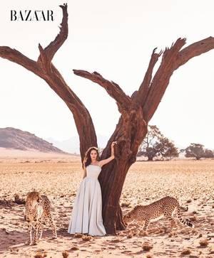 Aντζελίνα Τζολί: Ατρόμητη από τη Ναμίμπια της Αφρικής βρυχάται στο Harper's Bazaar