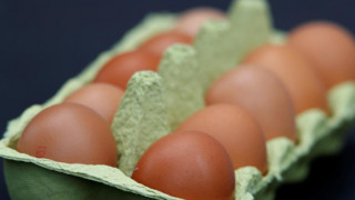 Παγκόσμια Ημέρα Αυγού: Η διατροφική επιλογή που μας κάνει καλό!