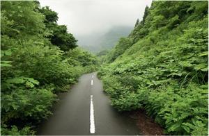 Αυτοκινητόδρομος Wagakawa, Ιαπωνία-  Η άσφαλτος υποκύπτει στην βλάστηση σε έναν δρόμο της Ιαπωνίας. Ερωτηθείς για την πιο παράξενη εμπειρία που είχε στα ταξίδια του ο Van Rensbergen έγραψε « Δεν πιστεύω στα μεταφυσικά φαινόμενα, αλλά στους σκοτεινούς δια