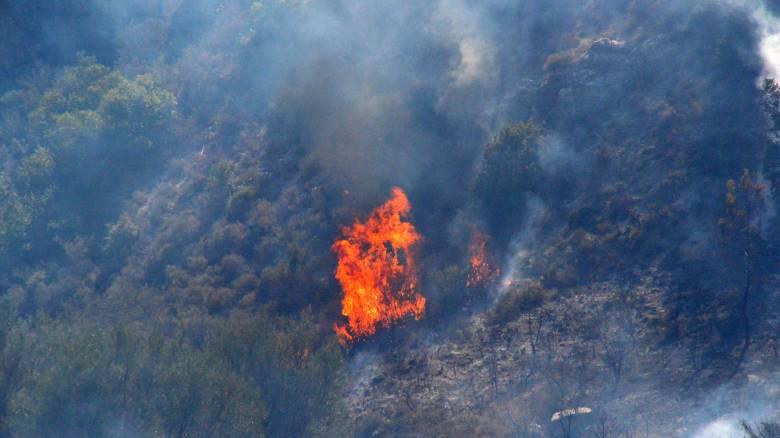 Φωτιά σε δασική περιοχή της Αιτωλοακαρνανίας