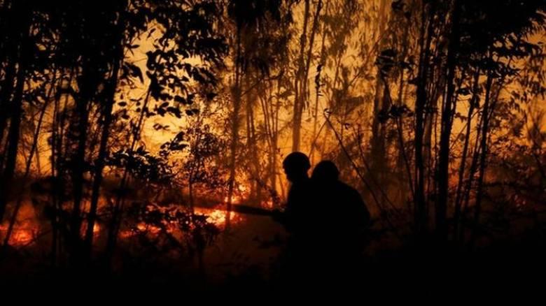 Σε εμπρηστές αποδίδει ο Ραχόι τις πυρκαγιές στη Γαλικία