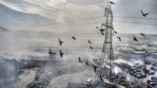 Η ρύπανση είναι θανατηφόρα για έναν στους δώδεκα στην Ελλάδα (vid)