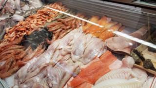 Ο Έλληνας «βασιλιάς» των ψαριών στην Κολωνία