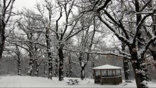 Έπεσαν τα πρώτα χιόνια στην βόρεια Ελλάδα - Ποιες περιοχές ντύθηκαν στα λευκά (pics)