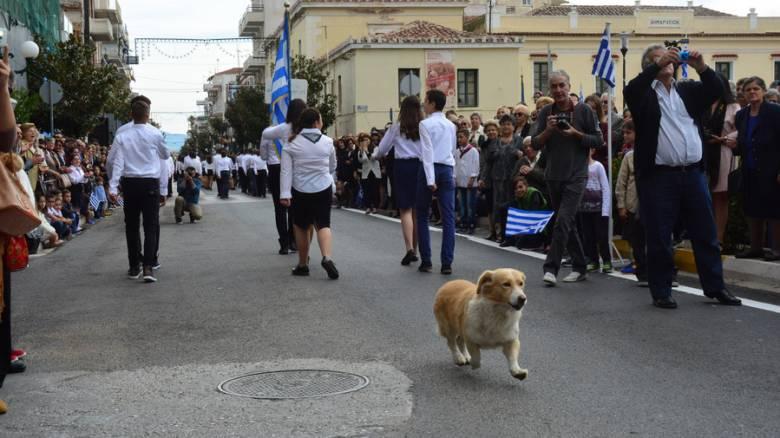 Σαντορίνη: Δικογραφία για τα επεισόδια στην παρέλαση για την 28η Οκτωβρίου