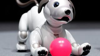 Η Sony δίνει ξανά «ζωή» στον Άιμπο, τον ρομποτικό σκύλο της