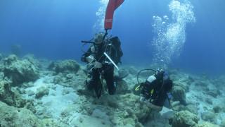 Υποβρύχια έρευνα στις νότιες ακτές της Νάξου με σημαντικά ευρήματα (pics)