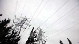 Φαρκαδόνα: Έκοψε δύο στύλους της ΔΕΗ για να κάνει... ποιμνιoστάσιο