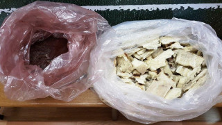 Εξαρθρώθηκε κύκλωμα κοκαΐνης με «έδρα» κλαμπ στο Μπουρνάζι