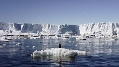 Περισσότεροι από 15.000 επιστήμονες εκπέμπουν SOS για το μέλλον του πλανήτη (vids)