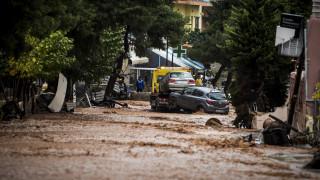 Η επόμενη μέρα στη Δυτική Αττική: Καταστροφή κι απόγνωση