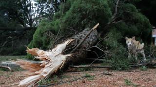 Με αμείωτη ένταση συνεχίζονται οι βροχοπτώσεις στην Κεντρική Μακεδονία
