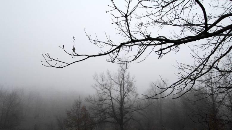 Βόλος: Στα ύψη η αιθαλομίχλη από τα τζάκια και τις ξυλόσπομπες