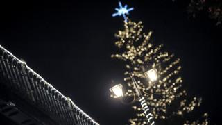 Το ψηλότερο φυσικό χριστουγεννιάτικο δέντρο φωταγωγήθηκε στα Τρίκαλα