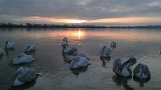 Χειμωνιάτικη απόδραση στη μαγευτική λίμνη Κερκίνη