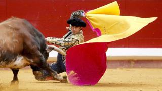 Μαινόμενος ταύρος επιτίθεται σε καουμπόι και το άλογό του σε αρένα (vid)